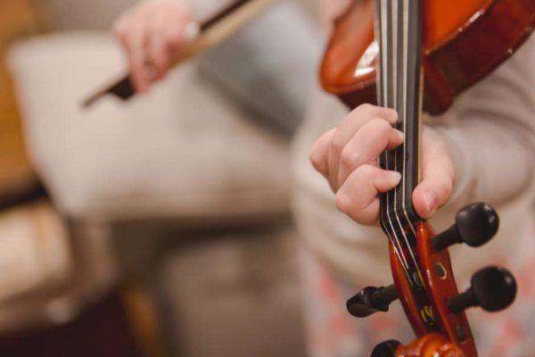 7 Best Violins for Beginners of 2020 – Student Violin Brands Reviews