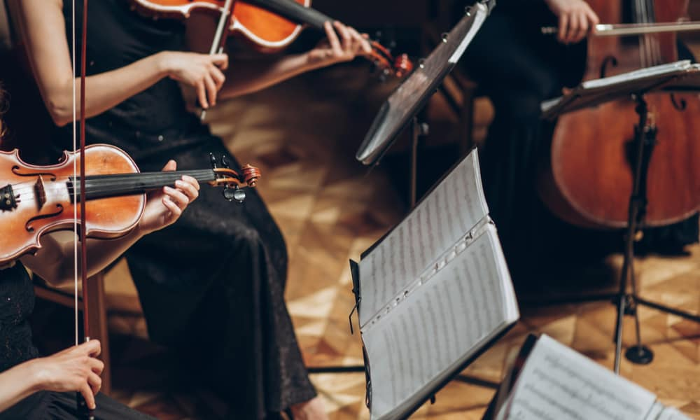 31 Best Violin Songs You May Love