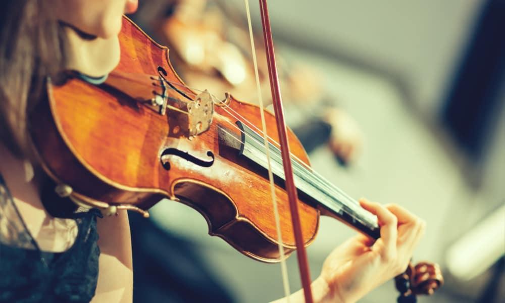 Best Violins for Professional
