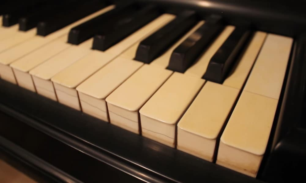 Ivory Keys