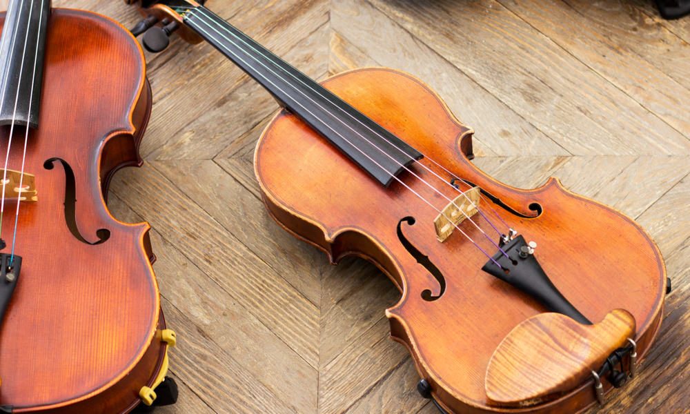 Viola vs. Violin What's the Difference